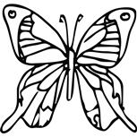 Grawer Specjalny-Motyl 2-1-1