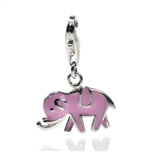 Charms H-0098