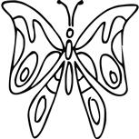 Grawer Specjalny-Motyl 2-1-8