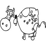 Grawer Specjalny-Krowa 11-1-4